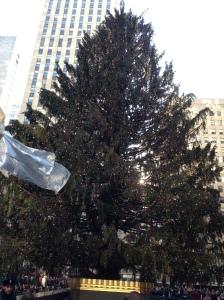 Rockefeller Tree